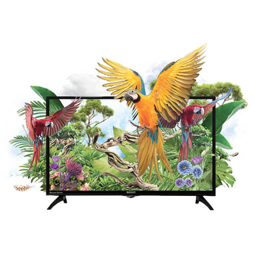 Buy Orient Macaw 32 HD Black On Installments